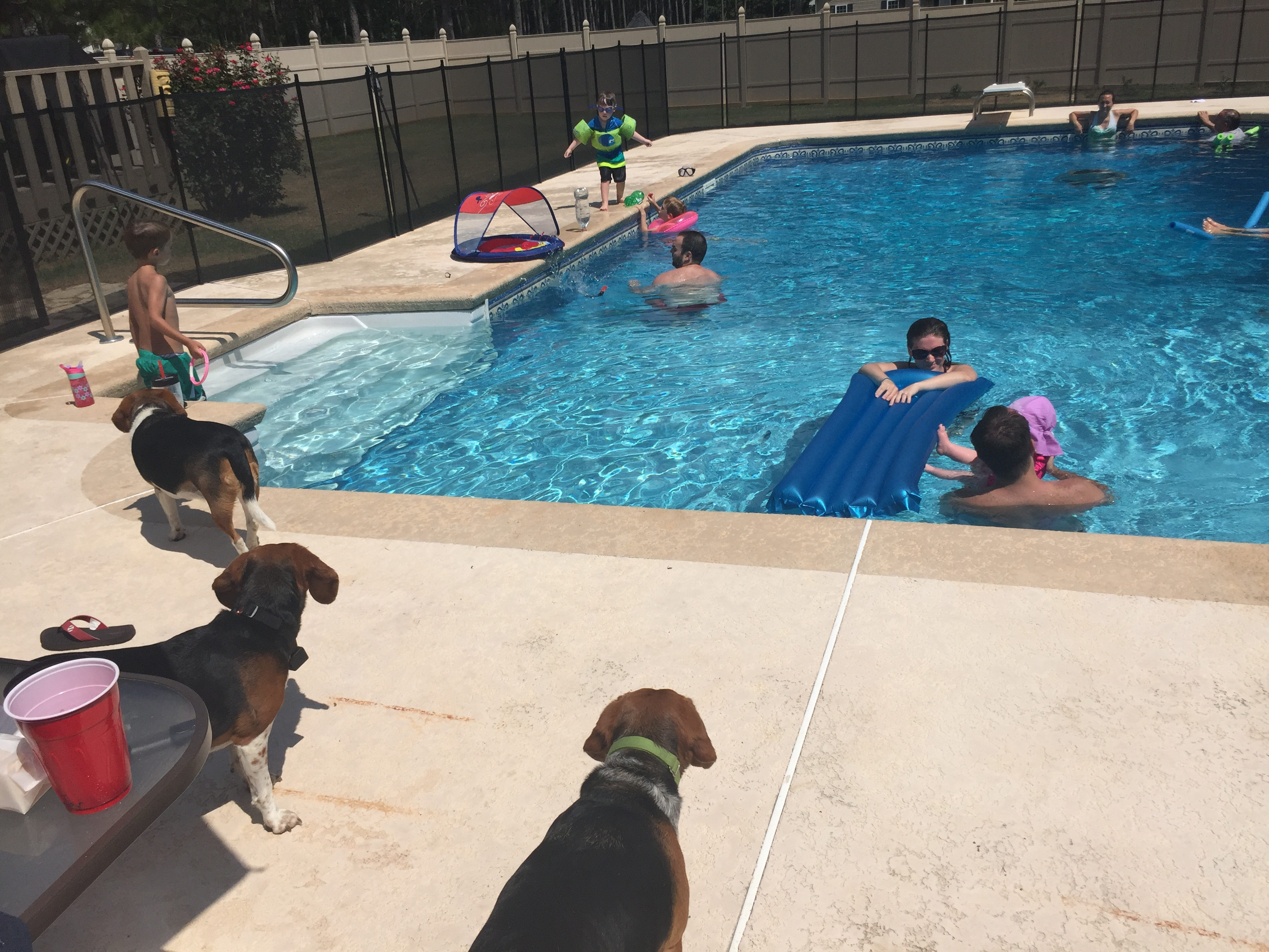 lots of pool time